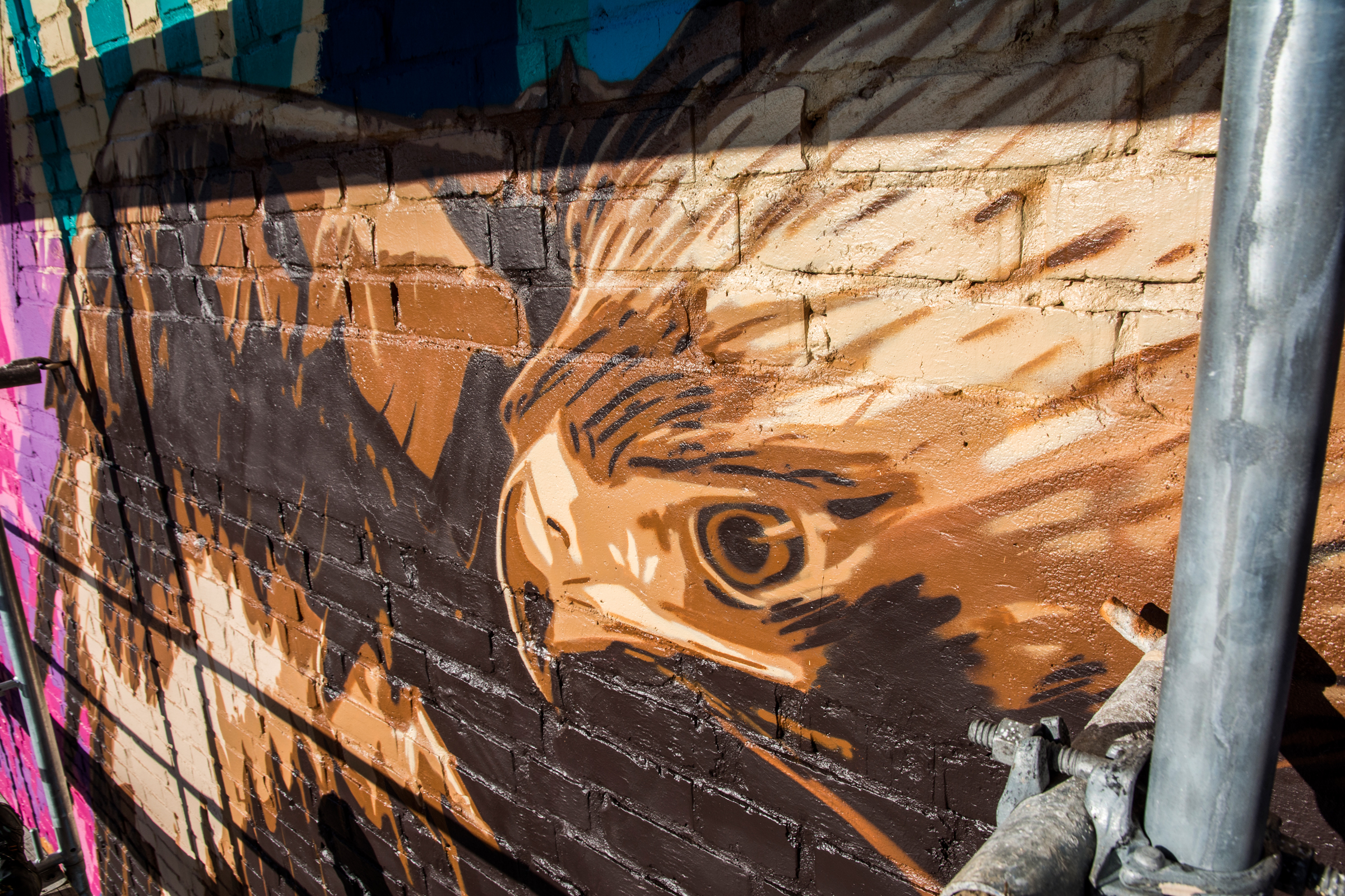 3Steps - Birds of Prey -Mural (13)